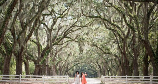 two women standing under a stunning tunnel of trees