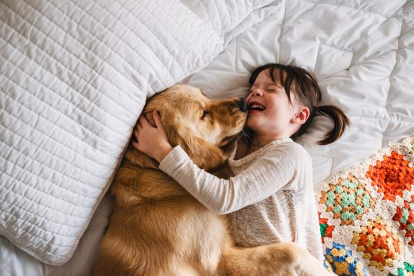 a young girl playing with her golden retriever on a bed